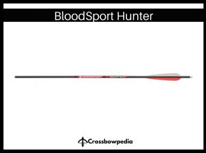 bloodsport hunter