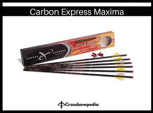 best crossbow bolt