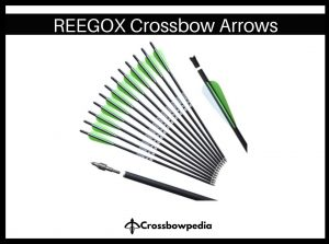 reegox crossbow arrow